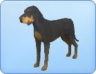 File:Breed-l13.png
