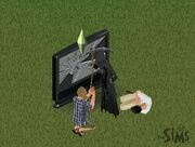 Plea Sims 1