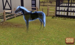 File:Horse ghost in The Sims 3.jpg