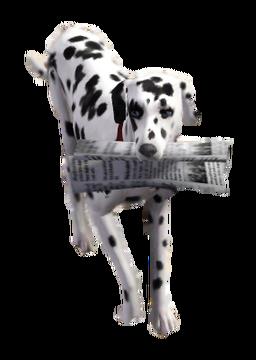 Dog newspaper TS3