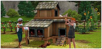 TS3 Chickens