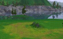 Hiddensprings - Meadow Beach