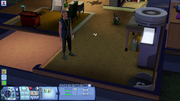 The Sims 3 (6)