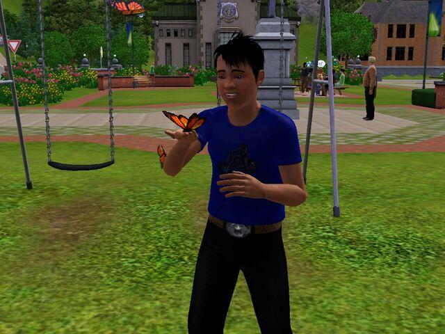File:TeenCatchingButterflies.jpg