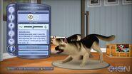 TS3 Pets Dog CAS Xbox 360