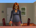 Thumbnail for version as of 03:33, December 4, 2011