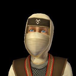 File:Ninja 1.png