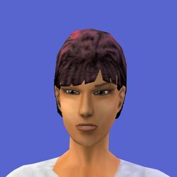 Diane Pleasant (The Sims console)