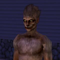 Оборотень в <i>The Sims 2</i>