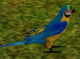 File:Blue Gold Macaw.png