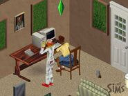 Roomies Household (1)