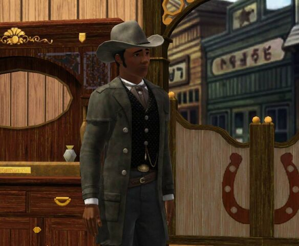 File:TS3 Movie Stuff Western promo.jpg