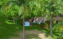 Sunlittides - Jungle Fishing Spot