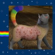 Nyan Cat the Pop Tart