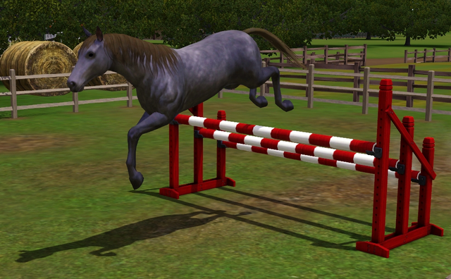 File:Horse Jumping.png