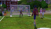 Festival summer - soccer goal 1