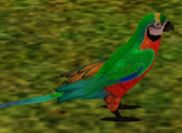 File:Catalina Macaw.png