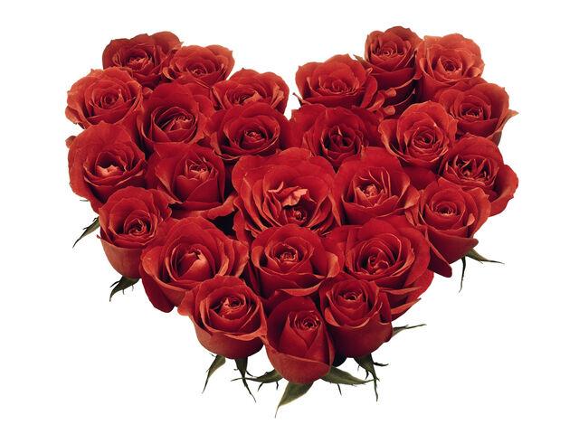File:Rose heart.jpg