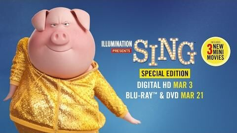 Sing Special Edition - Trailer - Own it on Digital HD 3 3 on Blu-ray & DVD 3 21