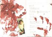 Ryuko diary