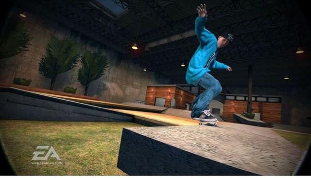 File:Skate2 rob1.jpg