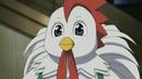Bo the chiken looks