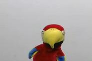 Skippy Shorts Nancy the Talking Parrot