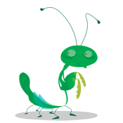File:Prayingmantis.png