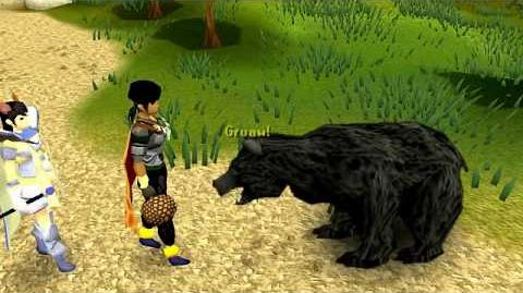 Runescape - Sky vs Bear