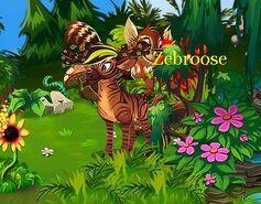 Zebroose b