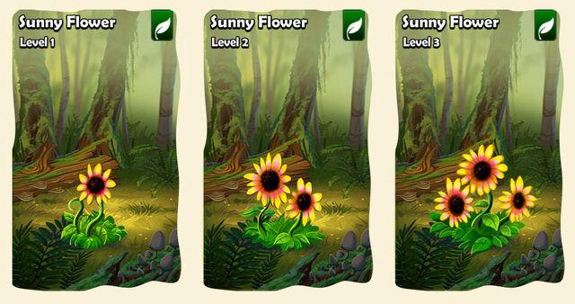 File:03 flower les sunny.jpg