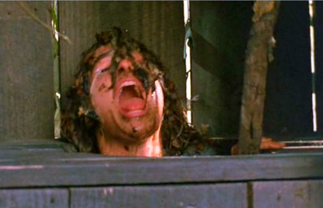 File:Wikia-Visualization-Main,sleepawaycamp.png