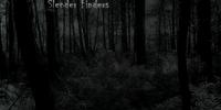 Slender Finders
