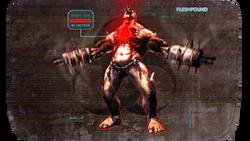 FleshpoundKF2