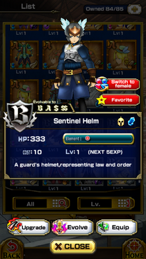 Sentinel Helm(Male)