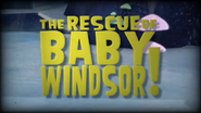 The Rescue Of Baby Windsor!