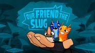 Our Friend The Slug