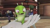 Vinedrill Slug Day