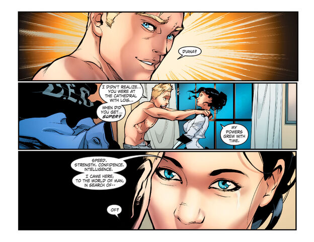 File:Wonder Woman SV smallville 61 1377313440066.jpg