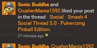 Sonic Buddha (Conker Crazed)