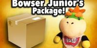 Bowser Junior's Package!