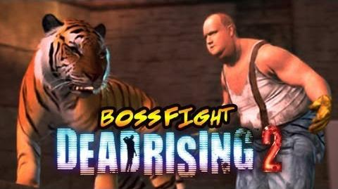HIPPIES AND TIGERS AND BALD GUYS OH MY! (Boss Fight of the Week)