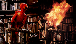 Fawkes3