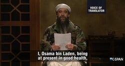 SNL Fred Armisen - Osama bin Laden