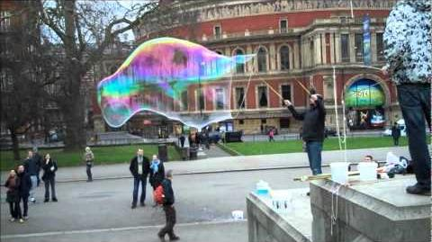 Hyde Park Bubbles