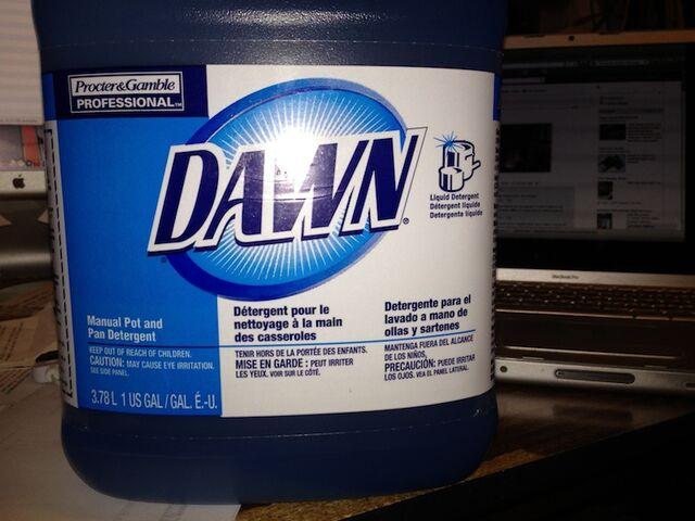 File:2012 03 25 Dawn PotandPan front sm.jpg