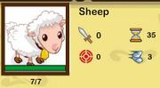 Social empires- sheep