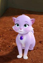 File:Cat sofia.jpg