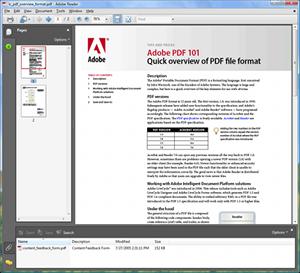 File:Adobe Reader 8-Windows Vista.png