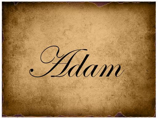 File:AdamVote2.png